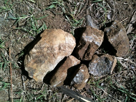 an example of the rocks we pulled from the borehole