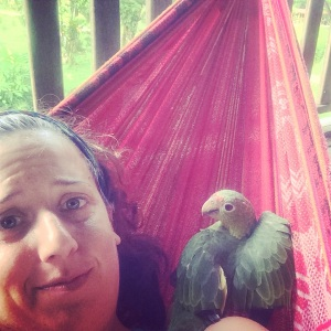 the same someone did NOT want me to enjoy a break in a hammock alone... this bird has no manners ;-)
