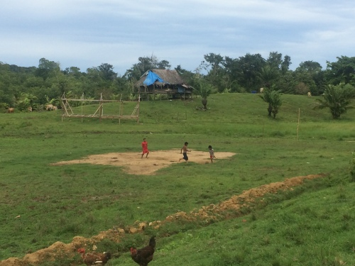 kids playing soccer :)