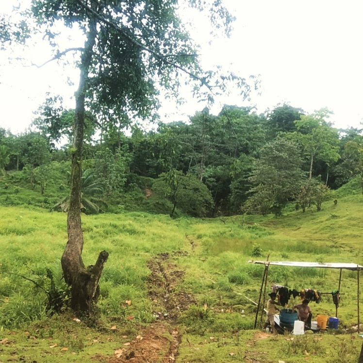 The little structure to the right is the laundry spot. To the left is the partial trench for the pipeline. The existing pipe goes back into the lowlands (grassy area to the left) and wraps around that hill on the left side and goes into the jungle
